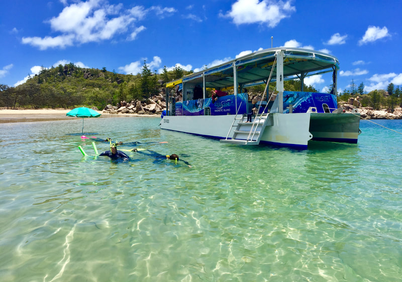 Snorkelling in Florence Bay with Aquascene Magnetic Island on their Discovery Tour